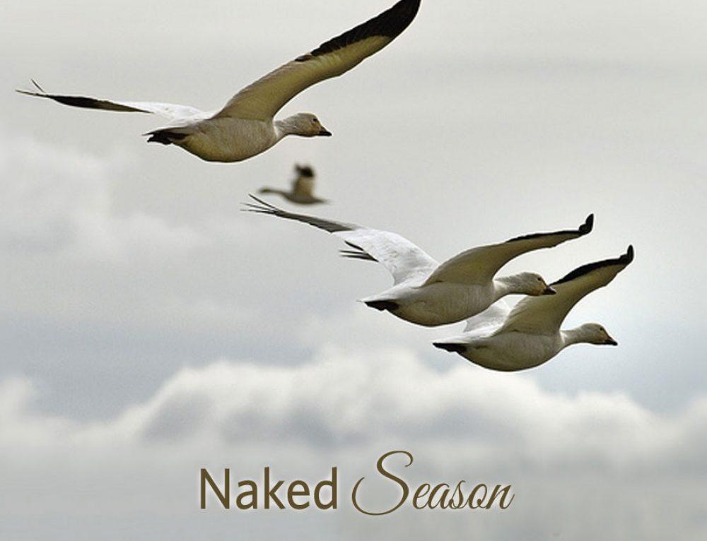 Naked season