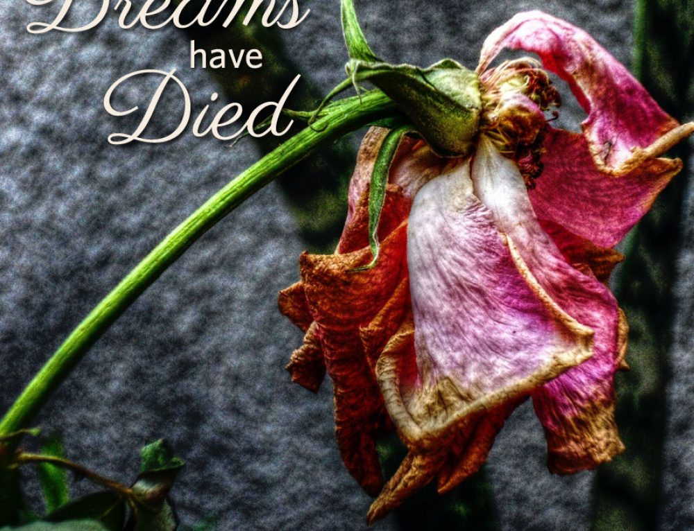 When your dreams have died
